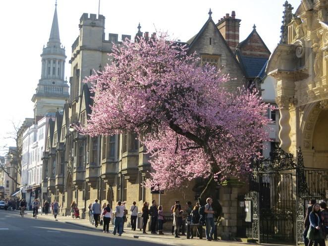 Spring Hotel Deals in Oxford